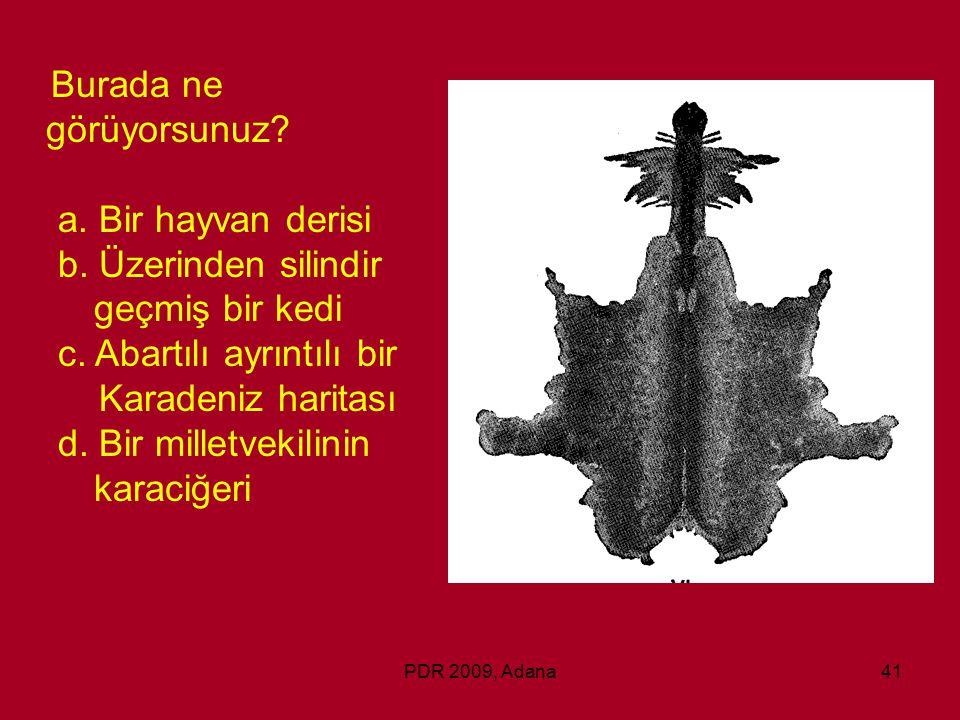 PDR 2009, Adana41 Burada ne görüyorsunuz? a. Bir hayvan derisi b. Üzerinden silindir geçmiş bir kedi c. Abartılı ayrıntılı bir Karadeniz haritası d. B