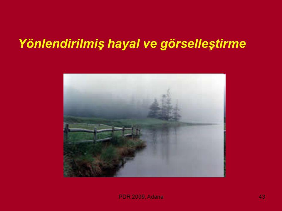 PDR 2009, Adana43 Yönlendirilmiş hayal ve görselleştirme