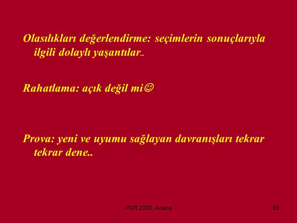 PDR 2009, Adana55 Olasılıkları değerlendirme: seçimlerin sonuçlarıyla ilgili dolaylı yaşantılar.. Rahatlama: açık değil mi Prova: yeni ve uyumu sağlay