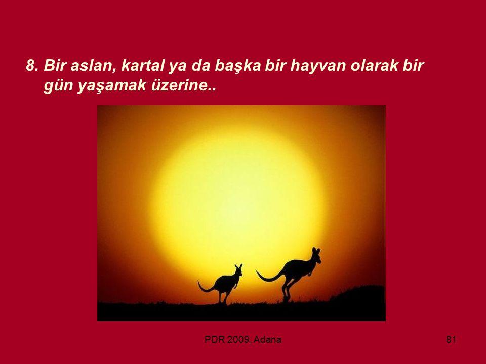 PDR 2009, Adana81 8.Bir aslan, kartal ya da başka bir hayvan olarak bir gün yaşamak üzerine..