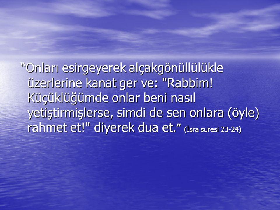 Onları esirgeyerek alçakgönüllülükle üzerlerine kanat ger ve: Rabbim.