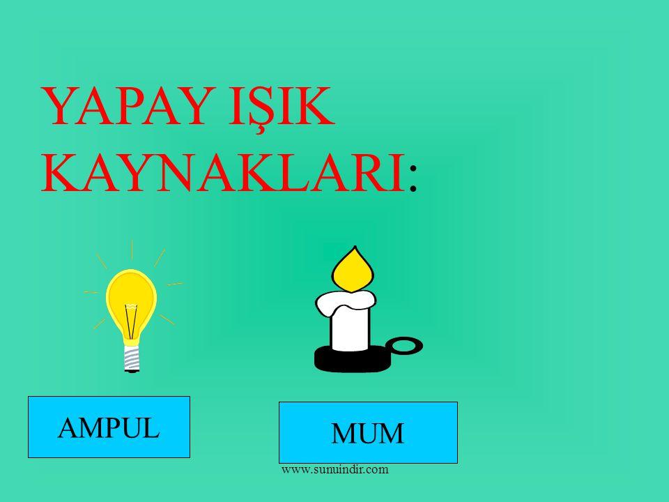 www.sunuindir.com YAPAY IŞIK KAYNAKLARI: AMPUL MUM