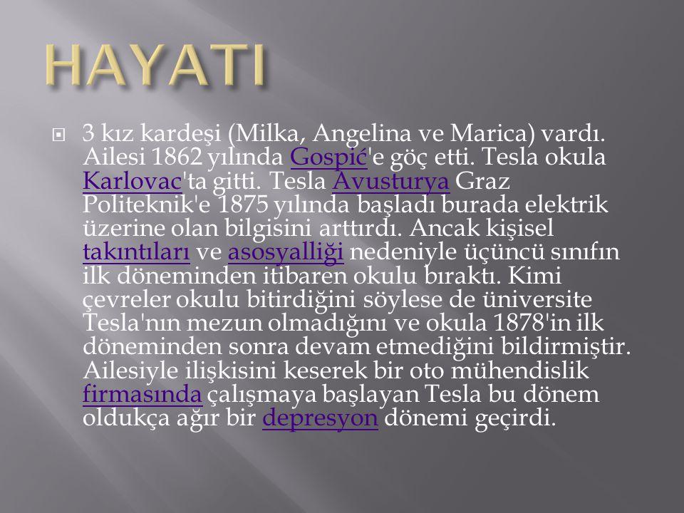  3 kız kardeşi (Milka, Angelina ve Marica) vardı. Ailesi 1862 yılında Gospić'e göç etti. Tesla okula Karlovac'ta gitti. Tesla Avusturya Graz Politekn