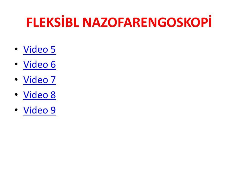 FLEKSİBL NAZOFARENGOSKOPİ Video 5 Video 6 Video 7 Video 8 Video 9