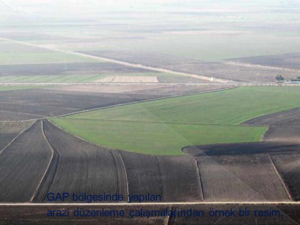 GAP bölgesinde yapılan arazi düzenleme çalışmalarından örnek bir resim.