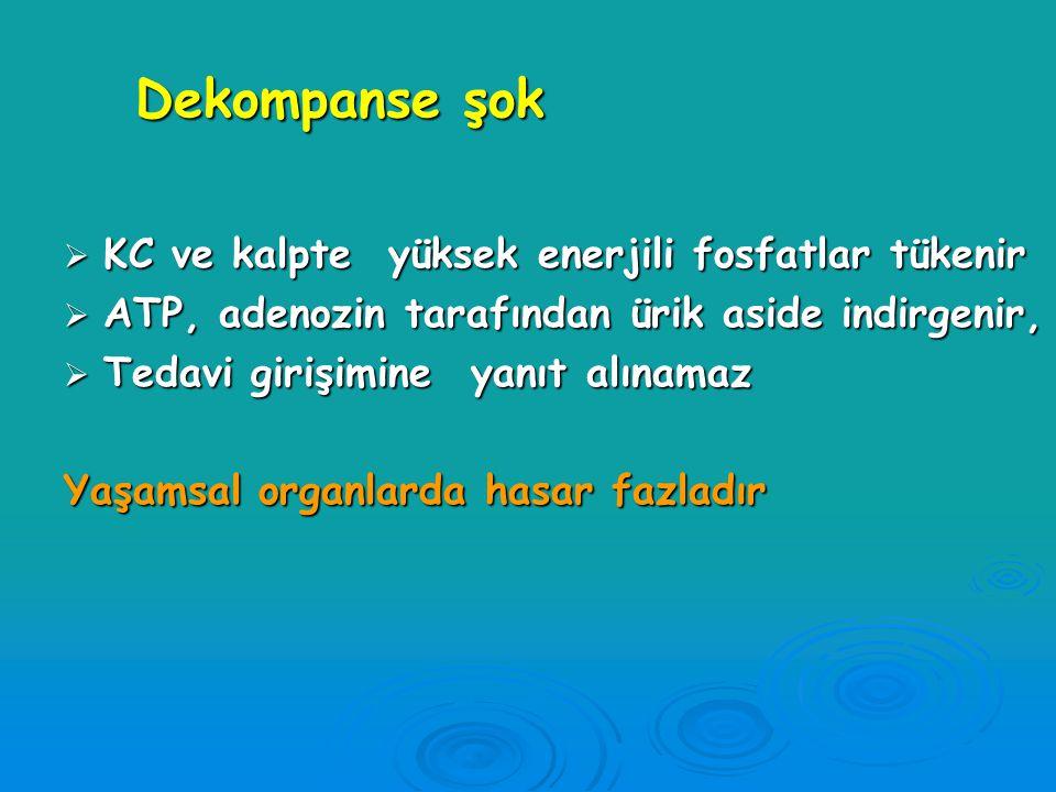 Dekompanse şok Hipoperfüzyon gelişmiştir. Sonuçlar;  Enerji aneorobik met. ile karşılanır - Laktat birikir (metabolik asidoz) -Na-K pompası aksar -Ka