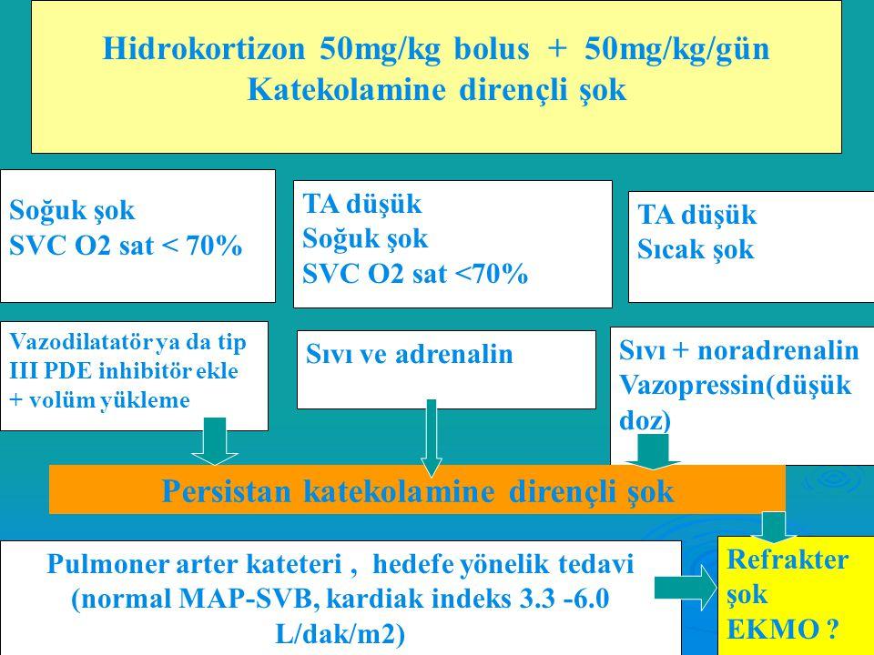 Beş-Onbeş Dakika  Sıvı –Elektrolit replasmanı Ca+ Ca+ Glukoz Glukoz  Beş-Altmış Dakika İnfeksiyon kontrol