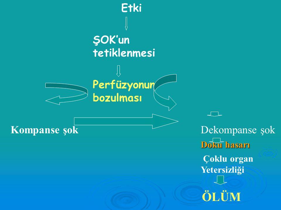 Patofizyoloji: Endojen mediyatörler  NO  Endojen vazoaktif mediyatörler Norepinefrin, epinefrin, Anjiyotensin II Norepinefrin, epinefrin, Anjiyotens