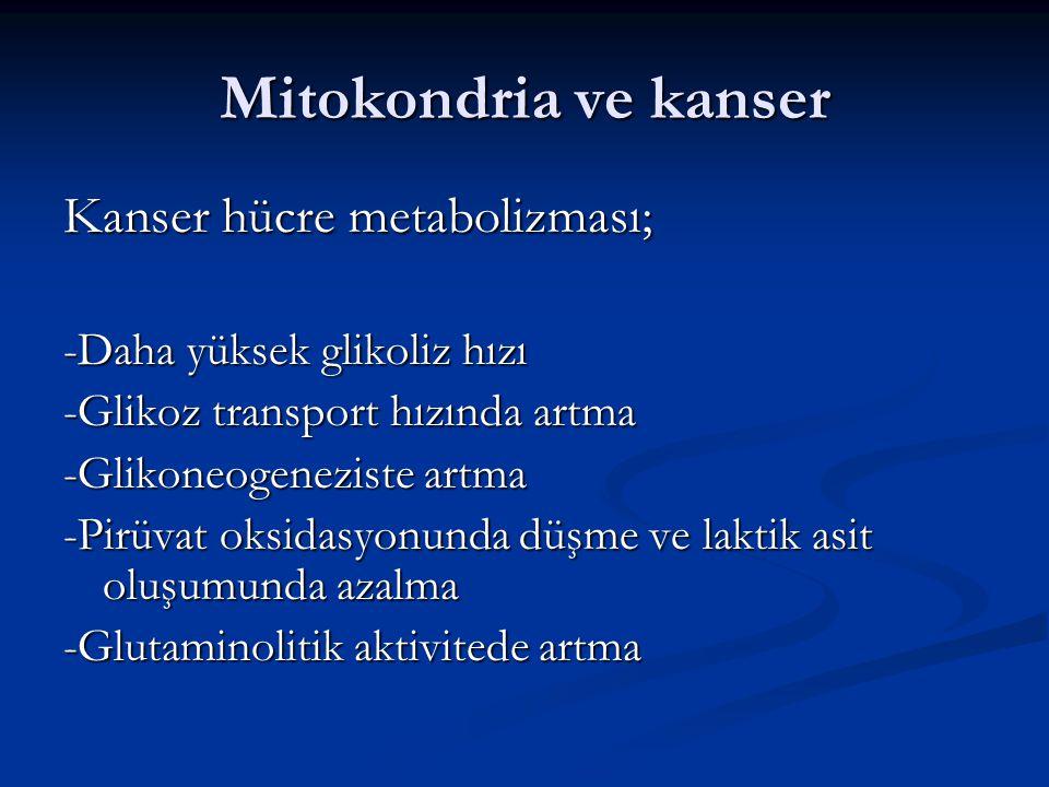Mitokondria ve kanser Kanser hücre metabolizması; -Daha yüksek glikoliz hızı -Glikoz transport hızında artma -Glikoneogeneziste artma -Pirüvat oksidas