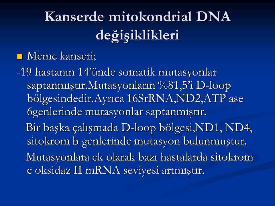 Kanserde mitokondrial DNA değişiklikleri Meme kanseri; Meme kanseri; -19 hastanın 14'ünde somatik mutasyonlar saptanmıştır.Mutasyonların %81,5'i D-loo