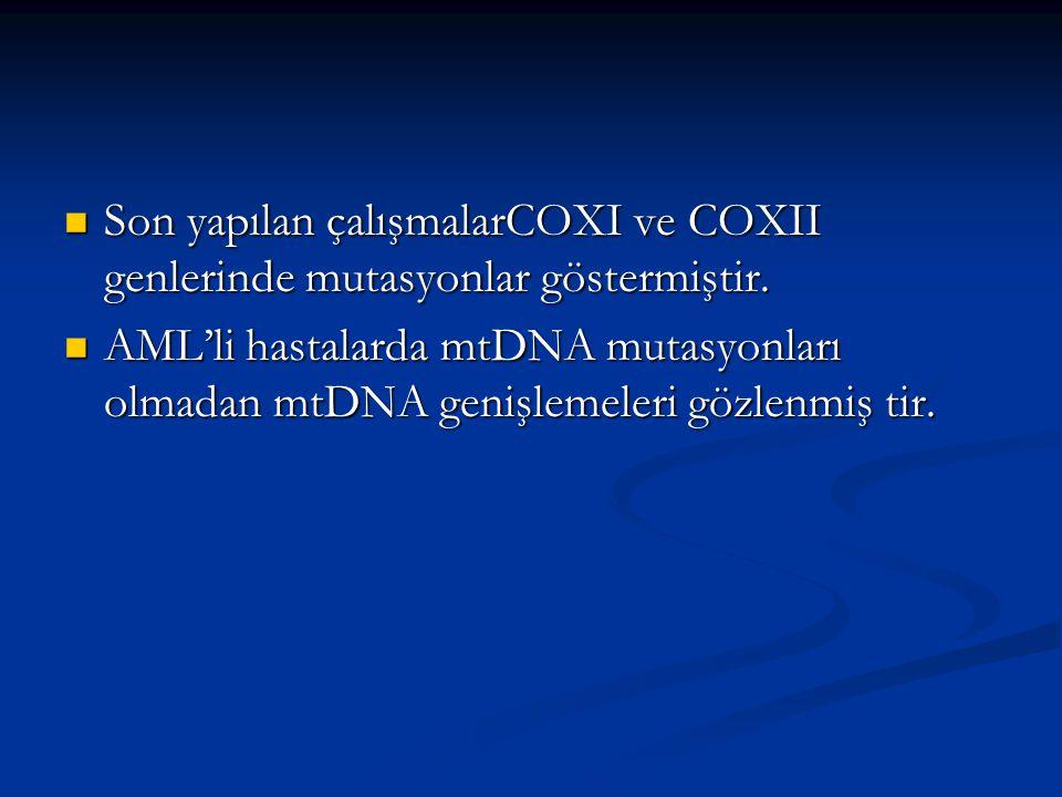 Son yapılan çalışmalarCOXI ve COXII genlerinde mutasyonlar göstermiştir. Son yapılan çalışmalarCOXI ve COXII genlerinde mutasyonlar göstermiştir. AML'