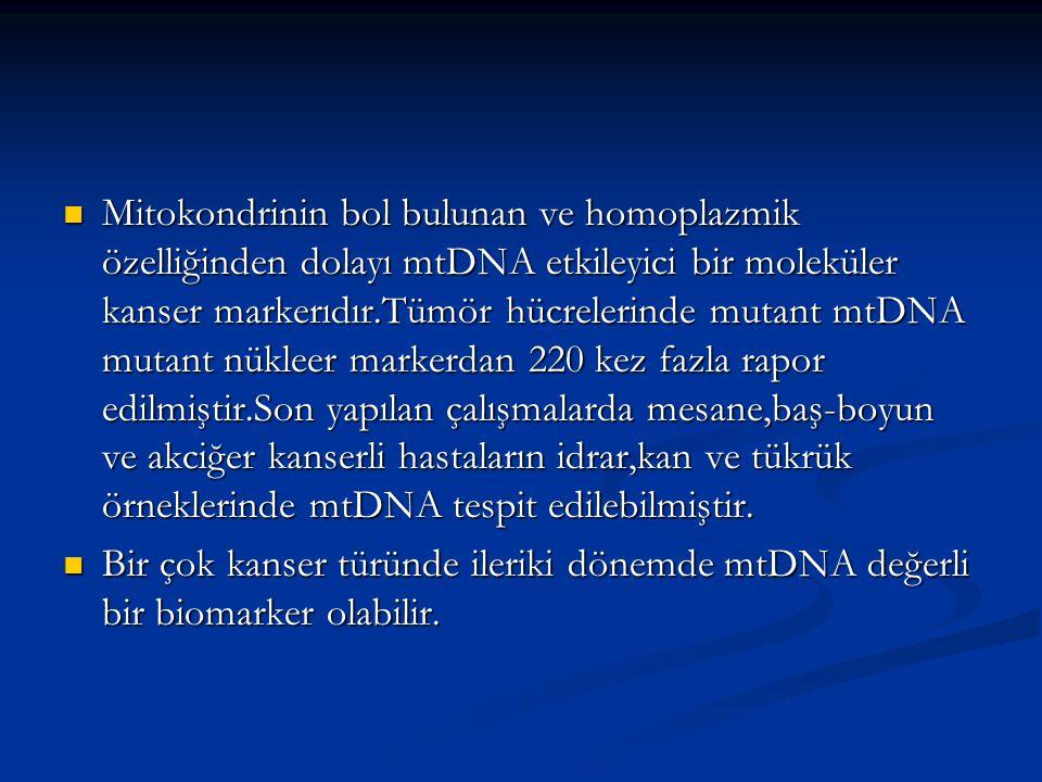 Mitokondrinin bol bulunan ve homoplazmik özelliğinden dolayı mtDNA etkileyici bir moleküler kanser markerıdır.Tümör hücrelerinde mutant mtDNA mutant n