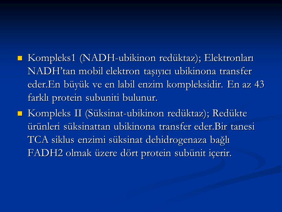 Kompleks1 (NADH-ubikinon redüktaz); Elektronları NADH'tan mobil elektron taşıyıcı ubikinona transfer eder.En büyük ve en labil enzim kompleksidir. En