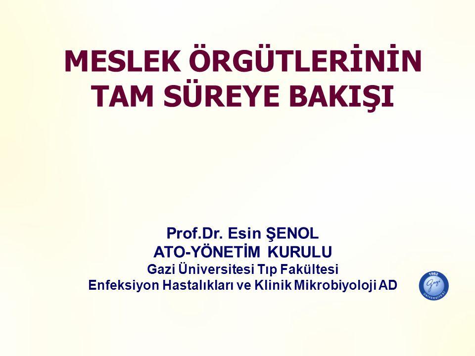 MESLEK ÖRGÜTLERİNİN TAM SÜREYE BAKIŞI Prof.Dr.
