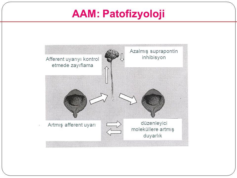 Azalmış suprapontin inhibisyon Afferent uyarıyı kontrol etmede zayıflama Artmış afferent uyarı düzenleyici moleküllere artmış duyarlık AAM: Patofizyol