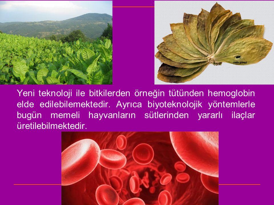 Yeni teknoloji ile bitkilerden örneğin tütünden hemoglobin elde edilebilemektedir. Ayrıca biyoteknolojik yöntemlerle bugün memeli hayvanların sütlerin