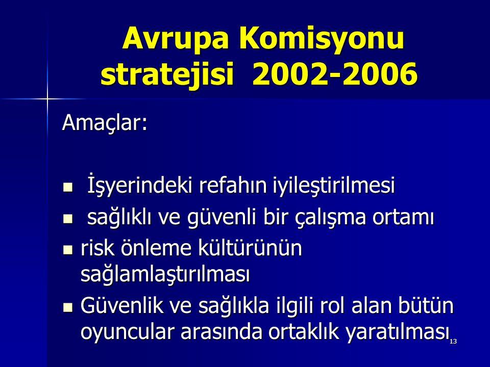 13 Avrupa Komisyonu stratejisi 2002-2006 Avrupa Komisyonu stratejisi 2002-2006 Amaçlar: İşyerindeki refahın iyileştirilmesi İşyerindeki refahın iyileş