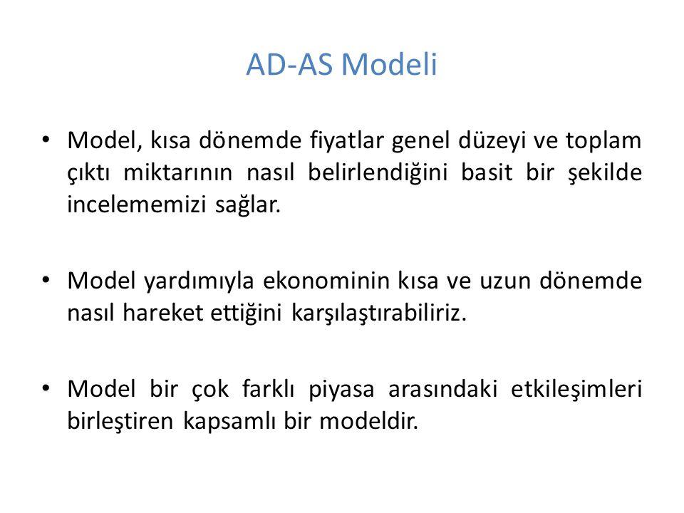 Model, kısa dönemde fiyatlar genel düzeyi ve toplam çıktı miktarının nasıl belirlendiğini basit bir şekilde incelememizi sağlar. Model yardımıyla ekon