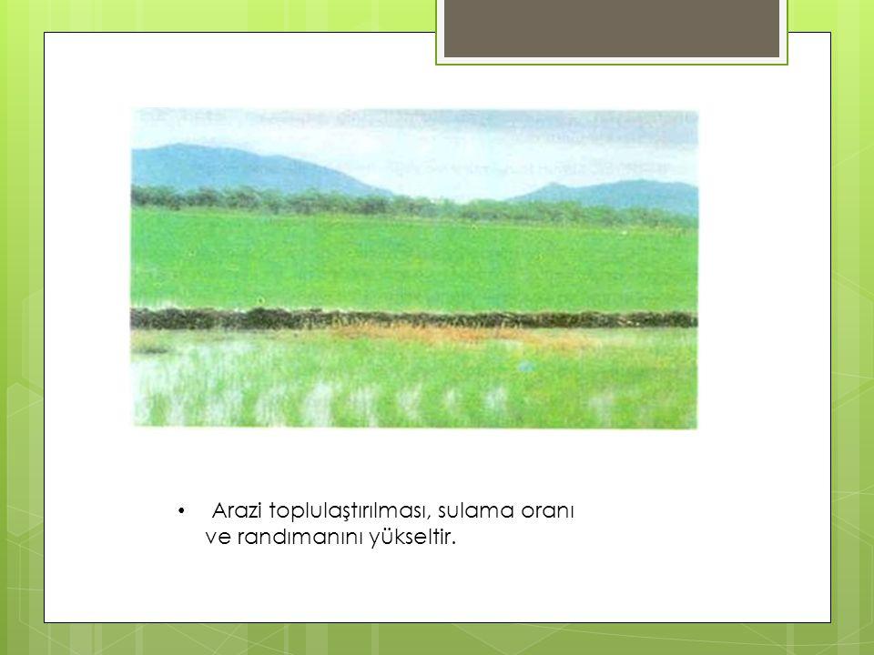 Arazi toplulaştırılması, sulama oranı ve randımanını yükseltir.