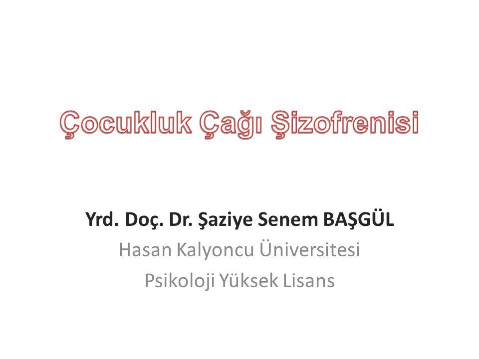 Yrd. Doç. Dr. Şaziye Senem BAŞGÜL Hasan Kalyoncu Üniversitesi Psikoloji Yüksek Lisans