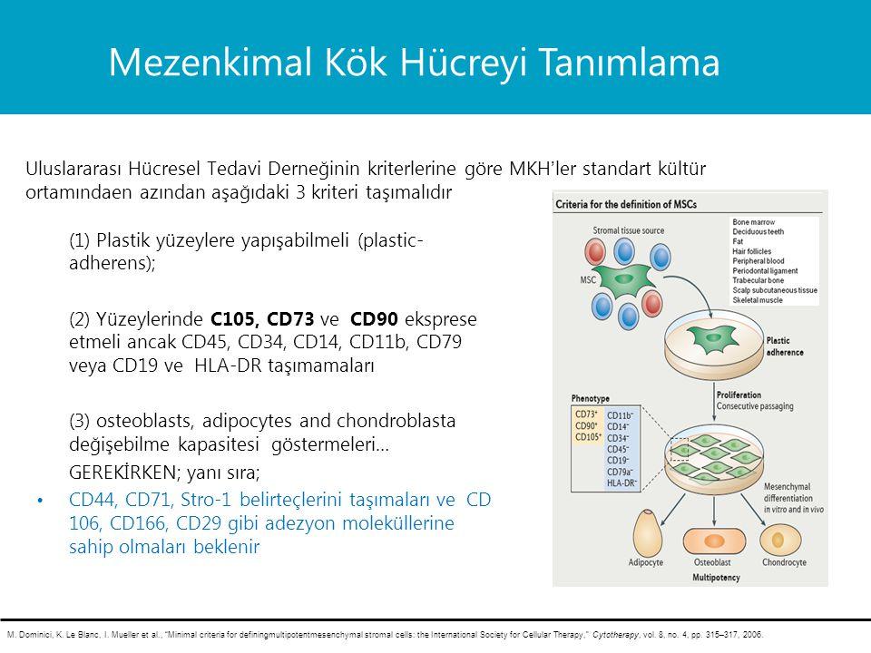 (1) Plastik yüzeylere yapışabilmeli (plastic- adherens); (2) Yüzeylerinde C105, CD73 ve CD90 eksprese etmeli ancak CD45, CD34, CD14, CD11b, CD79 veya CD19 ve HLA-DR taşımamaları (3) osteoblasts, adipocytes and chondroblasta değişebilme kapasitesi göstermeleri… GEREKİRKEN; yanı sıra; CD44, CD71, Stro-1 belirteçlerini taşımaları ve CD 106, CD166, CD29 gibi adezyon moleküllerine sahip olmaları beklenir M.
