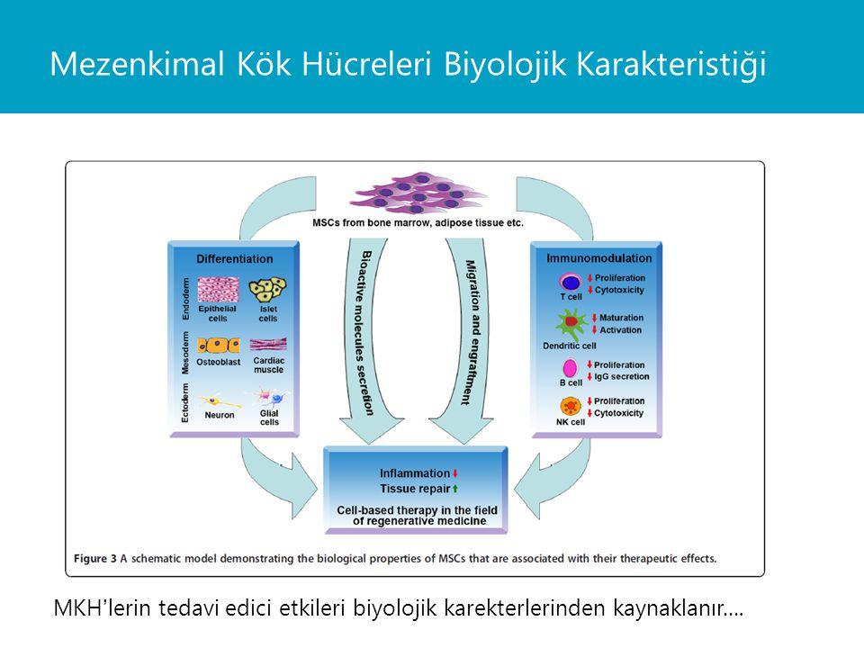 MKH'lerin tedavi edici etkileri biyolojik karekterlerinden kaynaklanır….