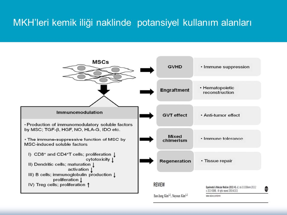 PROCHYMAL Compassionate use: (5/2006) USA geri ödeme 2012 Steroide dirençli GVHH tedavisinde MKH Deneyimleri The results of the Phase-II trial were presented at the 2006 ASH conference.