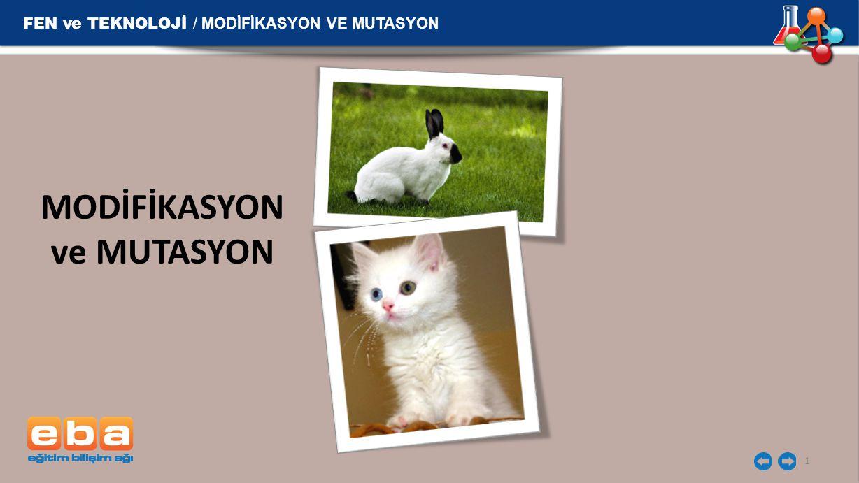 FEN ve TEKNOLOJİ / MODİFİKASYON VE MUTASYON MODİFİKASYON ve MUTASYON 1