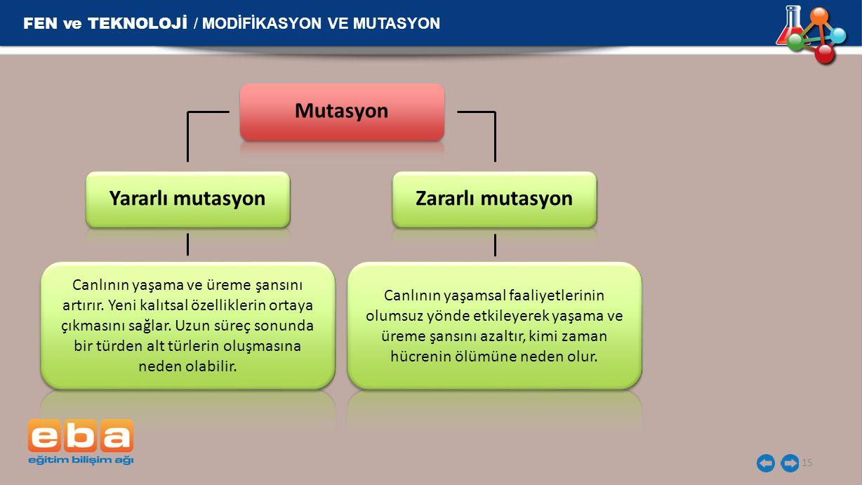 FEN ve TEKNOLOJİ / MODİFİKASYON VE MUTASYON 15 Yararlı mutasyon Canlının yaşama ve üreme şansını artırır. Yeni kalıtsal özelliklerin ortaya çıkmasını