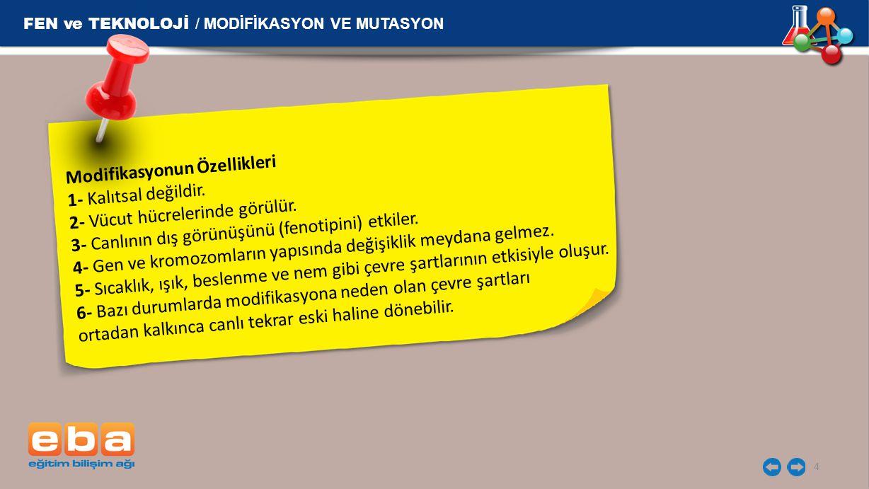 FEN ve TEKNOLOJİ / MODİFİKASYON VE MUTASYON 4 Modifikasyonun Özellikleri 1- Kalıtsal değildir. 2- Vücut hücrelerinde görülür. 3- Canlının dış görünüşü