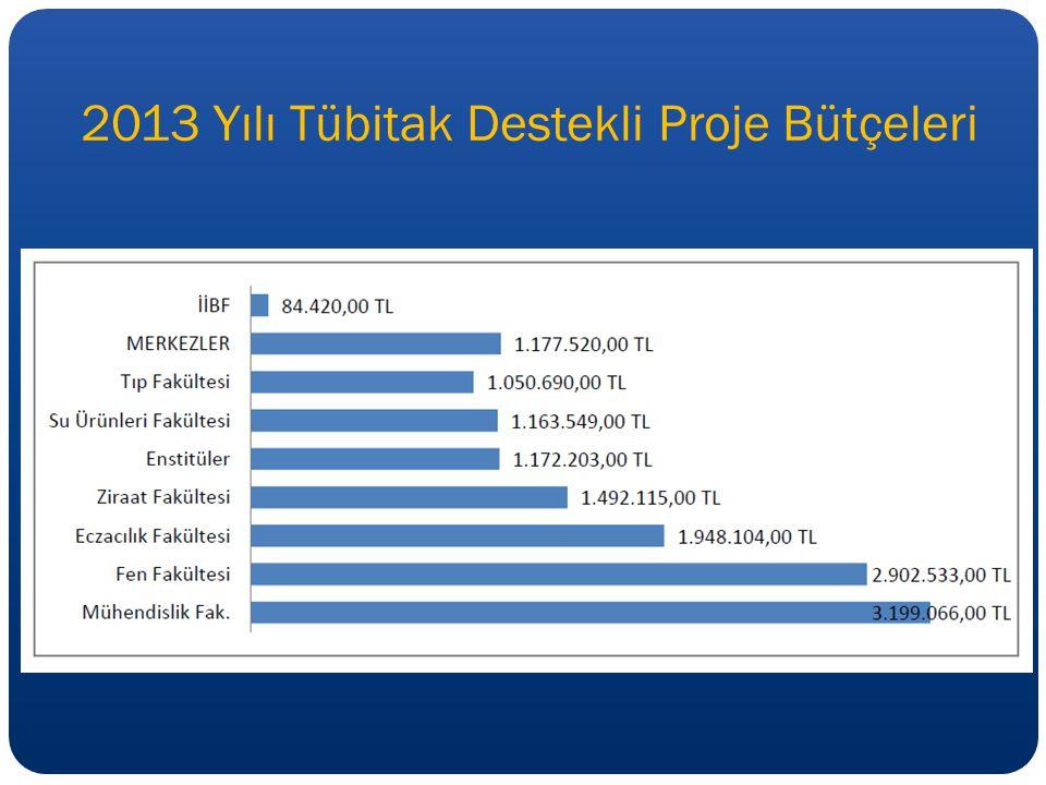 2013 Yılı Tübitak Destekli Proje Bütçeleri