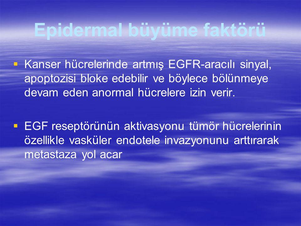 Epidermal büyüme faktörü   Kanser hücrelerinde artmış EGFR-aracılı sinyal, apoptozisi bloke edebilir ve böylece bölünmeye devam eden anormal hücrelere izin verir.