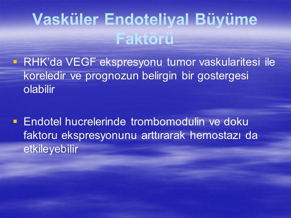 Vasküler Endoteliyal Büyüme Faktörü   RHK'da VEGF ekspresyonu tumor vaskularitesi ile koreledir ve prognozun belirgin bir gostergesi olabilir   Endotel hucrelerinde trombomodulin ve doku faktoru ekspresyonunu arttırarak hemostazı da etkileyebilir