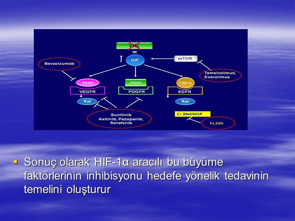  Sonuç olarak HIF-1α aracılı bu büyüme faktörlerinin inhibisyonu hedefe yönelik tedavinin temelini oluşturur