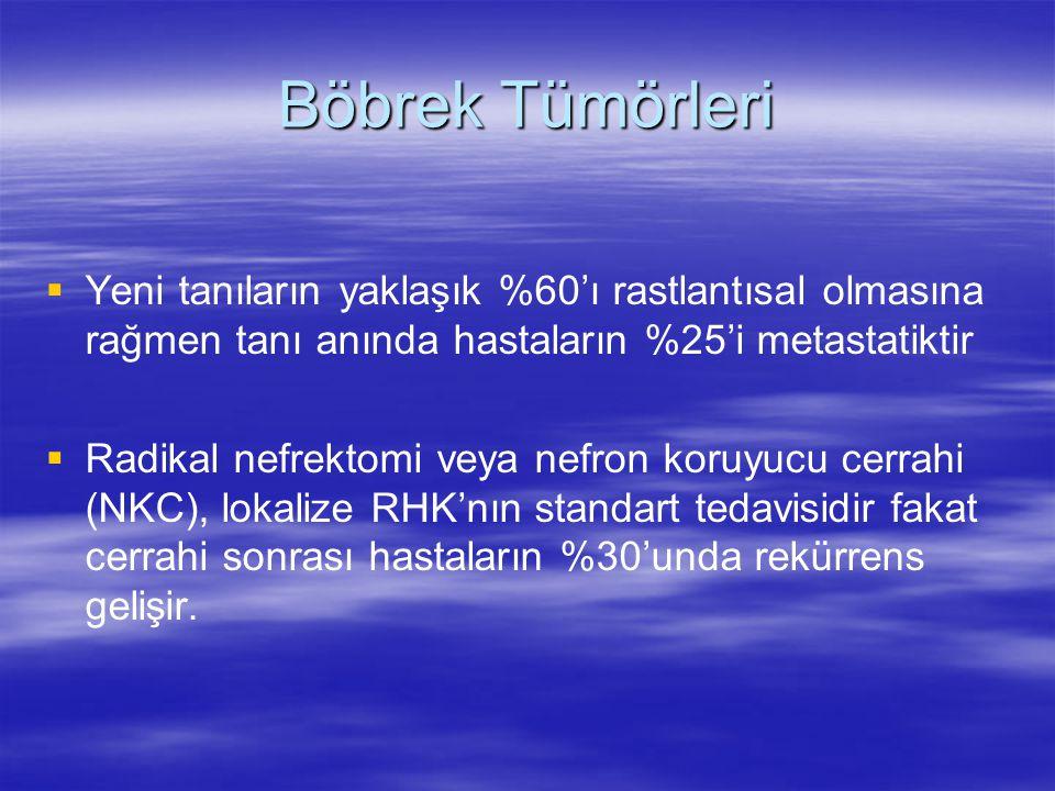 mTOR İnhibitörleri  Temsirolimus (Torisel)  Everolimus (Afinitor) (RAD001)