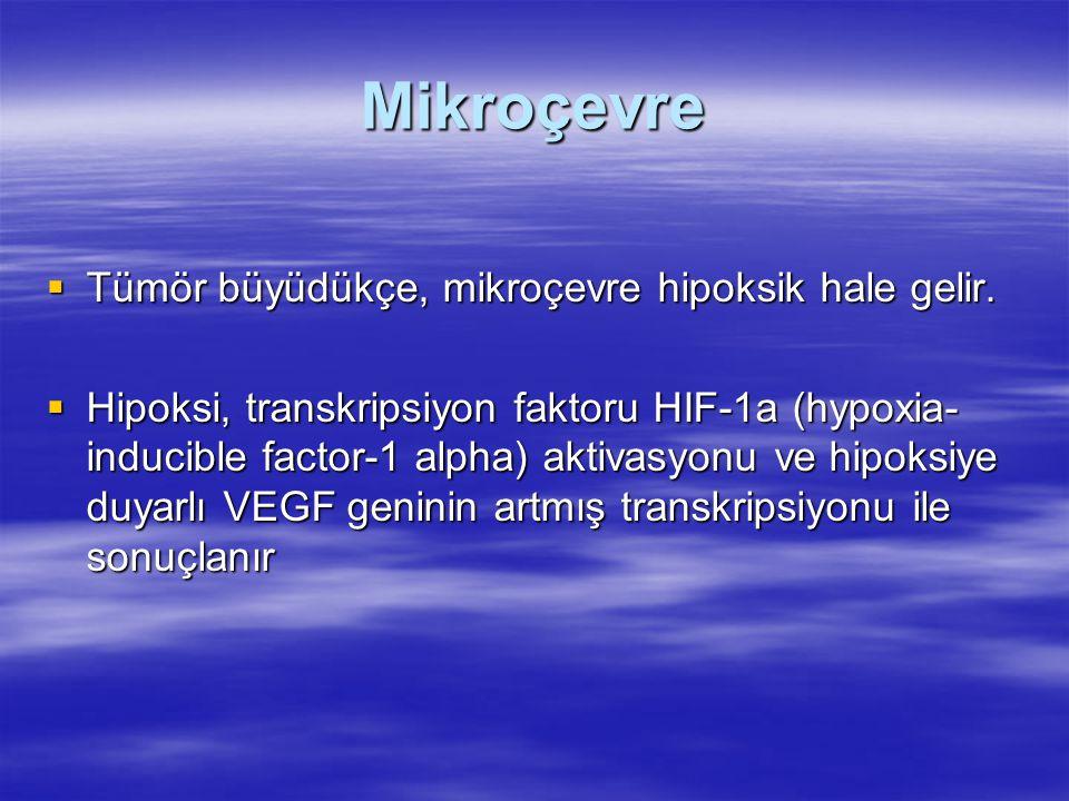 Mikroçevre  Tümör büyüdükçe, mikroçevre hipoksik hale gelir.