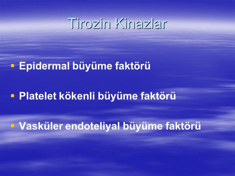 Tirozin Kinaz İnhibitörleri  Sorafenib (Nexavar)  Sunitinib (Sutent)  Pazopanib (Votrient)