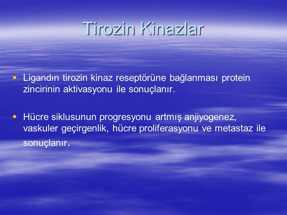 Tirozin Kinazlar   Ligandın tirozin kinaz reseptörüne bağlanması protein zincirinin aktivasyonu ile sonuçlanır.