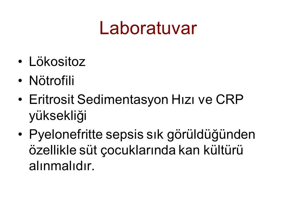 Laboratuvar Lökositoz Nötrofili Eritrosit Sedimentasyon Hızı ve CRP yüksekliği Pyelonefritte sepsis sık görüldüğünden özellikle süt çocuklarında kan kültürü alınmalıdır.