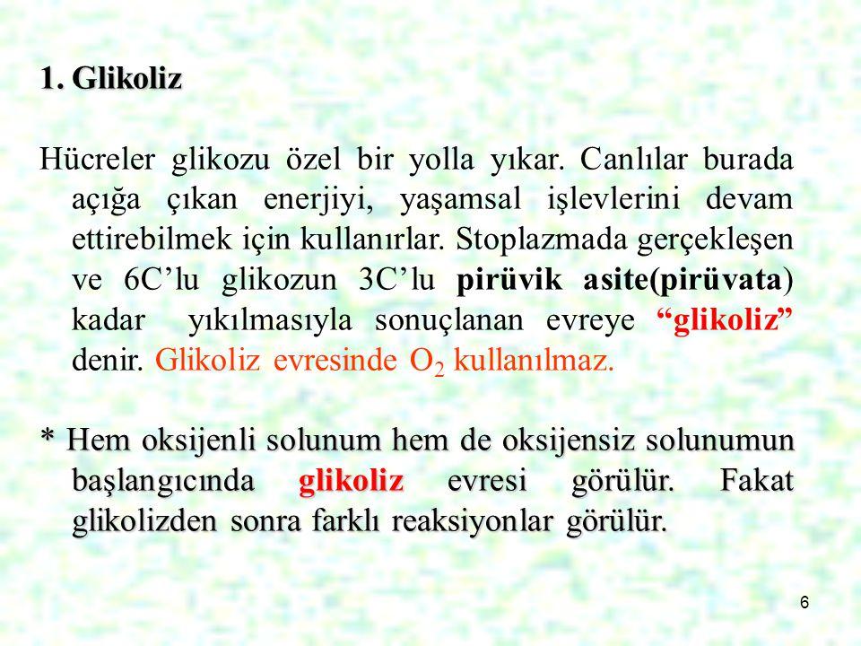 7 Glikoz yapı olarak kararlı bir bileşiktir.