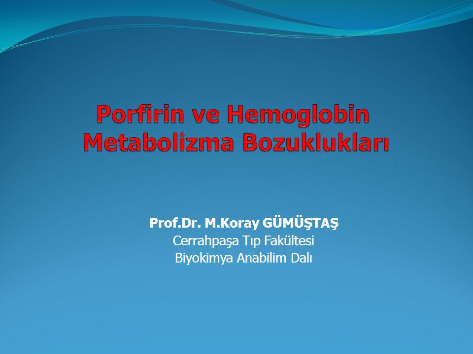 Prof.Dr. M.Koray GÜMÜŞTAŞ Cerrahpaşa Tıp Fakültesi Biyokimya Anabilim Dalı