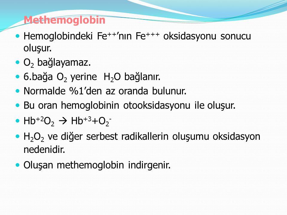 Methemoglobin Hemoglobindeki Fe ++ 'nın Fe +++ oksidasyonu sonucu oluşur. O 2 bağlayamaz. 6.bağa O 2 yerine H 2 O bağlanır. Normalde %1'den az oranda
