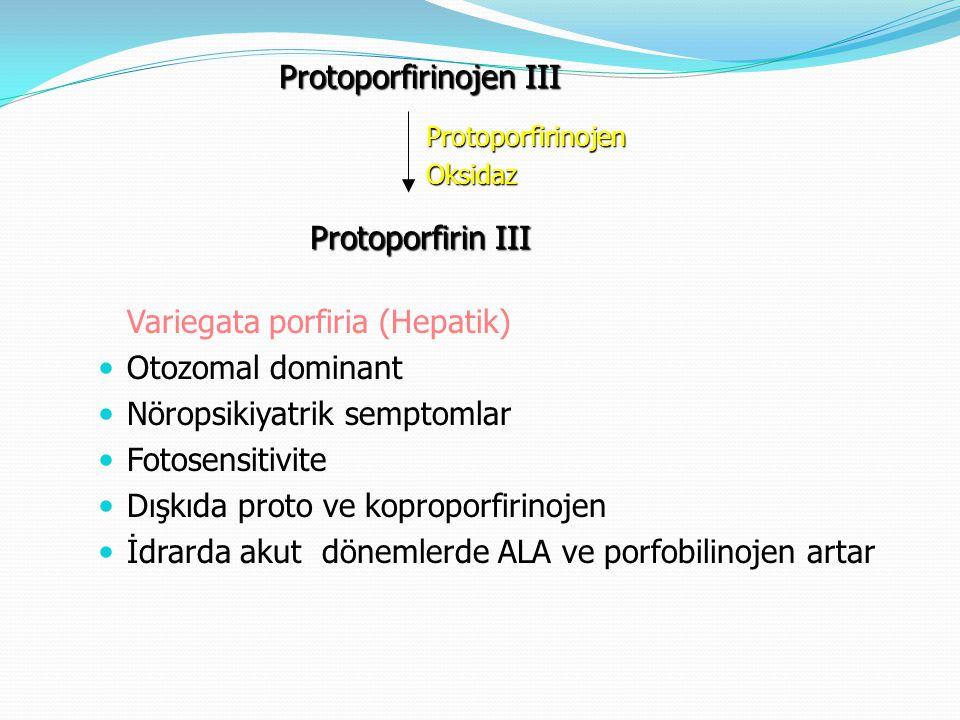 Variegata porfiria (Hepatik) Otozomal dominant Nöropsikiyatrik semptomlar Fotosensitivite Dışkıda proto ve koproporfirinojen İdrarda akut dönemlerde A