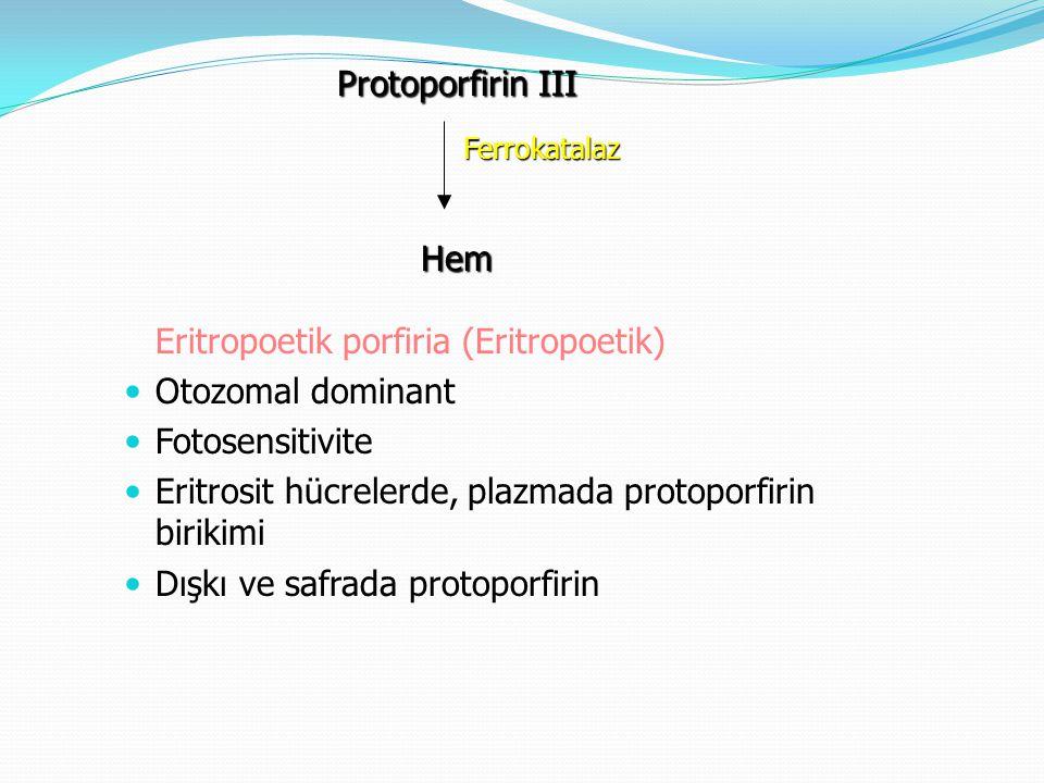 Eritropoetik porfiria (Eritropoetik) Otozomal dominant Fotosensitivite Eritrosit hücrelerde, plazmada protoporfirin birikimi Dışkı ve safrada protopor