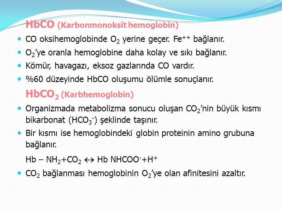 HbCO (Karbonmonoksit hemoglobin) CO oksihemoglobinde O 2 yerine geçer. Fe ++ bağlanır. O 2 'ye oranla hemoglobine daha kolay ve sıkı bağlanır. Kömür,