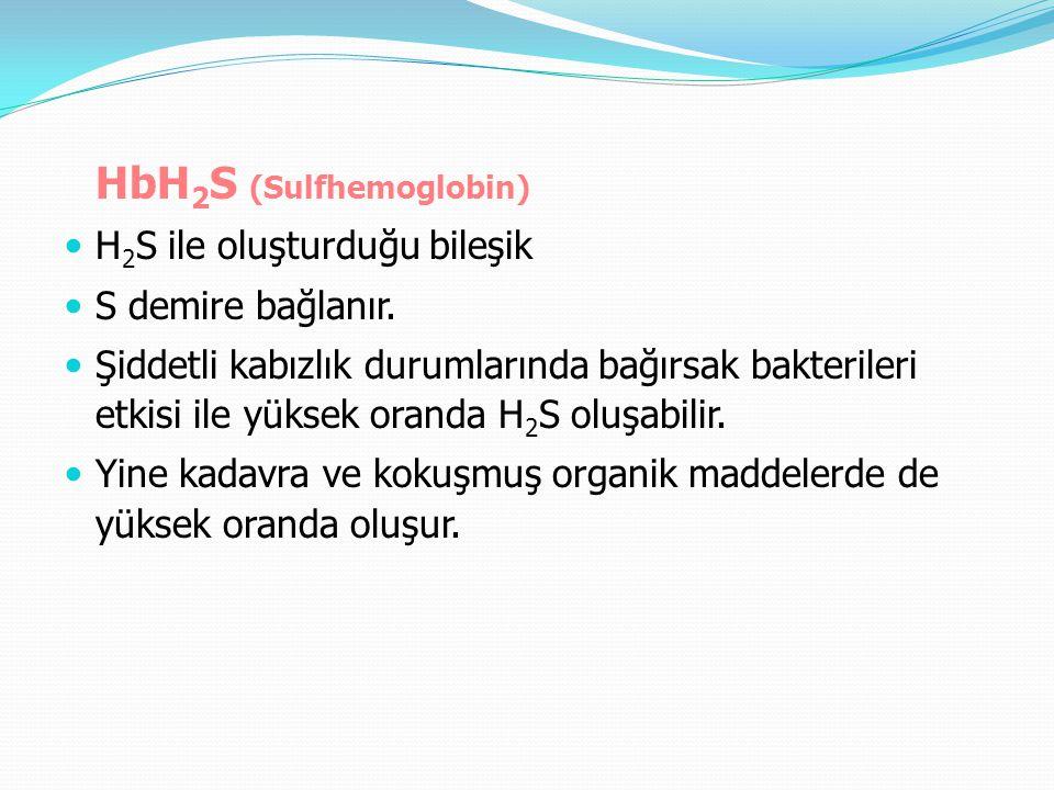 HbH 2 S (Sulfhemoglobin) H 2 S ile oluşturduğu bileşik S demire bağlanır. Şiddetli kabızlık durumlarında bağırsak bakterileri etkisi ile yüksek oranda