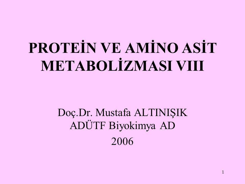 1 PROTEİN VE AMİNO ASİT METABOLİZMASI VIII Doç.Dr. Mustafa ALTINIŞIK ADÜTF Biyokimya AD 2006