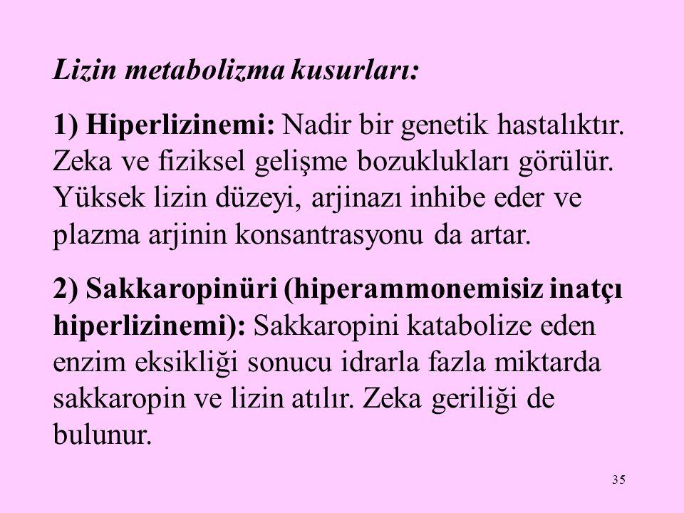 35 Lizin metabolizma kusurları: 1) Hiperlizinemi: Nadir bir genetik hastalıktır. Zeka ve fiziksel gelişme bozuklukları görülür. Yüksek lizin düzeyi, a
