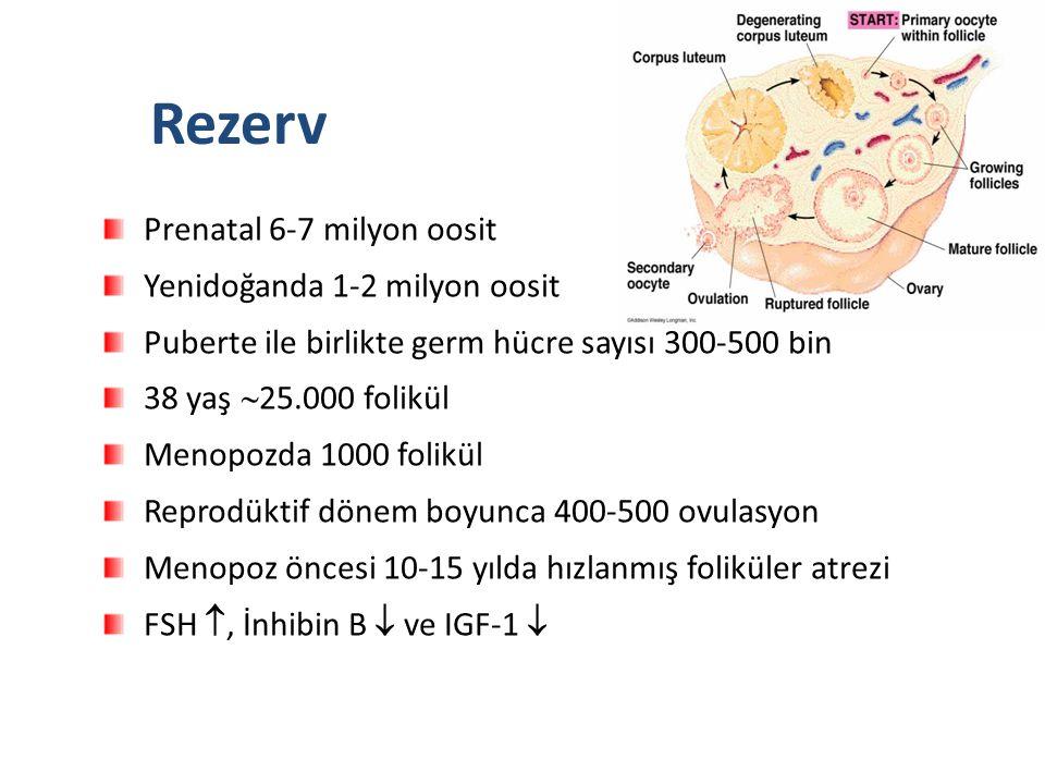 Prenatal 6-7 milyon oosit Yenidoğanda 1-2 milyon oosit Puberte ile birlikte germ hücre sayısı 300-500 bin 38 yaş  25.000 folikül Menopozda 1000 folikül Reprodüktif dönem boyunca 400-500 ovulasyon Menopoz öncesi 10-15 yılda hızlanmış foliküler atrezi FSH , İnhibin B  ve IGF-1  Rezerv