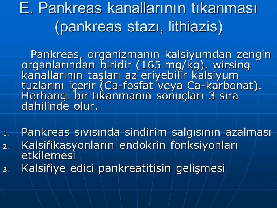 E. Pankreas kanallarının tıkanması (pankreas stazı, lithiazis) Pankreas, organizmanın kalsiyumdan zengin organlarından biridir (165 mg/kg). wirsing ka